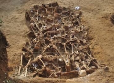 Open mass grave full of skeletons