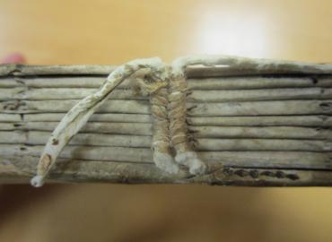 Photo of old book binding